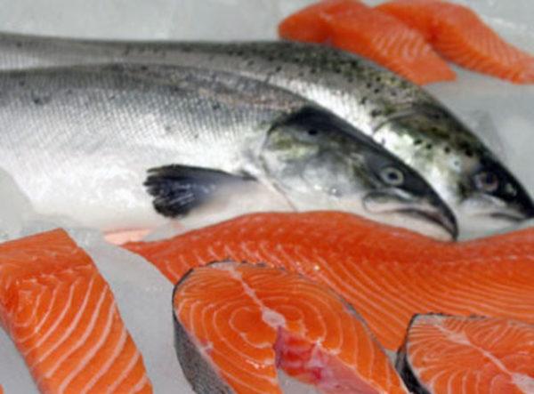 Холодильные камеры для заморозки/хранения рыбы